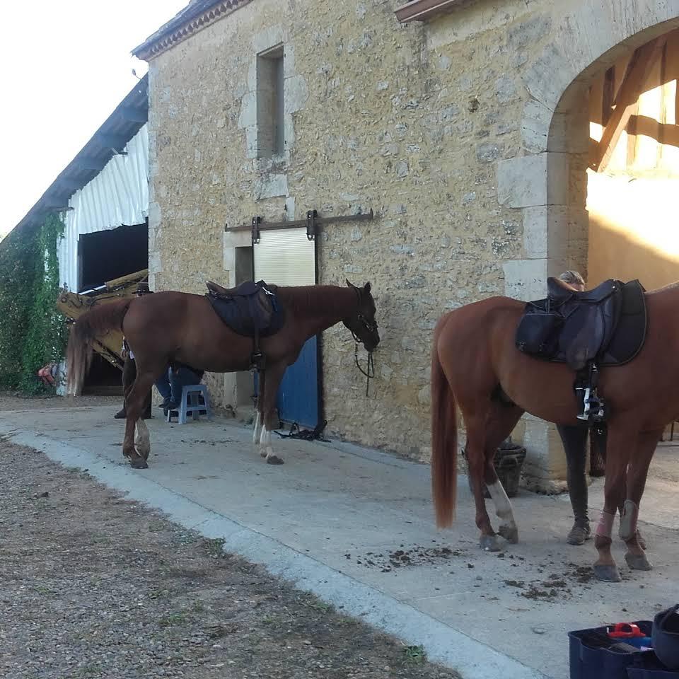 Séjour enfants – Equitation