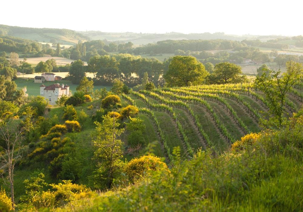 week-end vignes-villes-gers