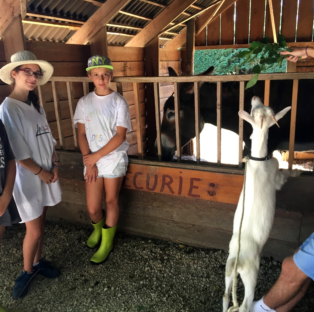 sejour enfant à la ferme seissan-gersseissan gers