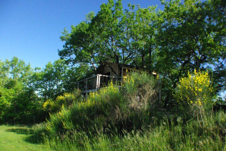 cabane dans les arbres gers