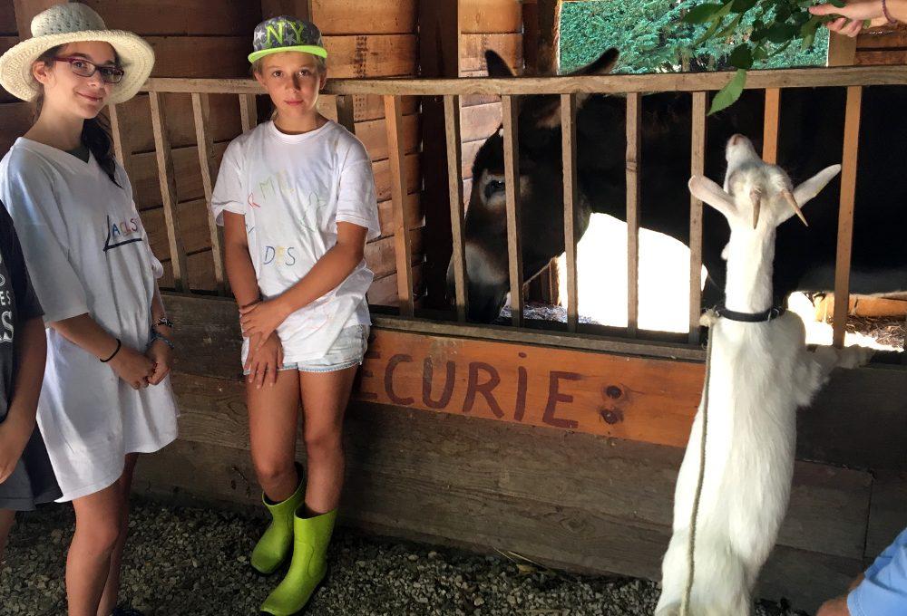 sejour enfant à la ferme seissan-Gers- Ecurie l'âne Basptiste, une chèvre et les enfants